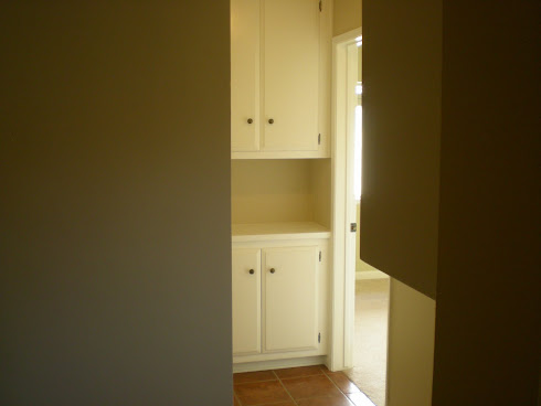 Hallway Cabinets Painting