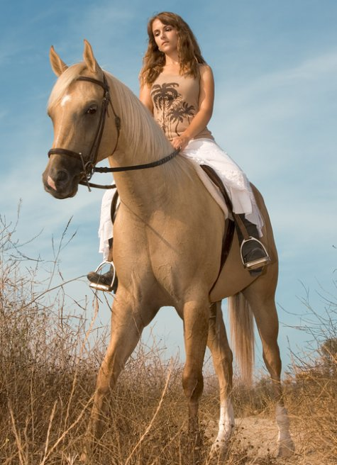 Nude Women Horseback - Hot Girls Wallpaper