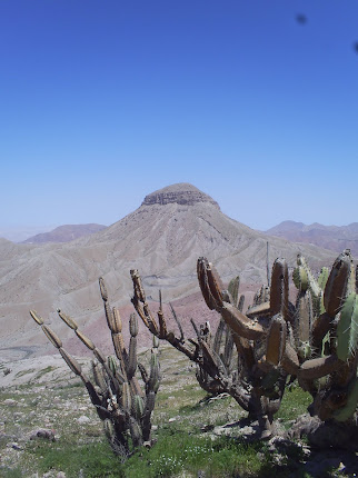 CERRO BAUL