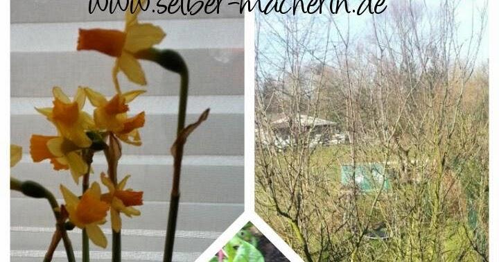 selber macherin gartenkalender m rz was wird ges t gepflanzt und geerntet. Black Bedroom Furniture Sets. Home Design Ideas