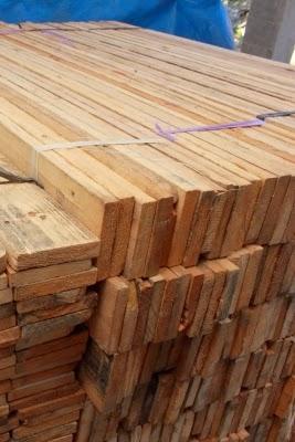 suplier kayu pinus di surabaya