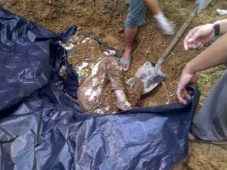 Ditemukan Mayat Wanita Tanpa Identitas Terkubur Di Kebun Sawit