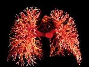 Tx pulmonar