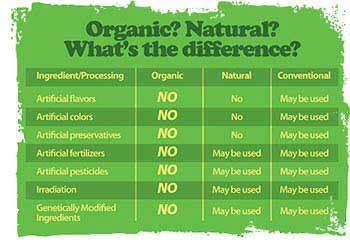 organic food vs conventional food essay