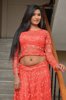 Shilpa New Spicy South Actress in Orange Gaghra Choli in Vetapalem Movies