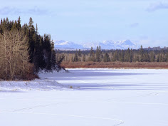 Glenmore Reservoir in Winter