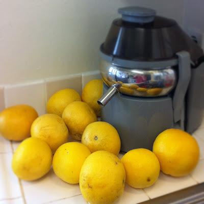 grapefruit margaritas www.thebrighterwriter.blogspot.com
