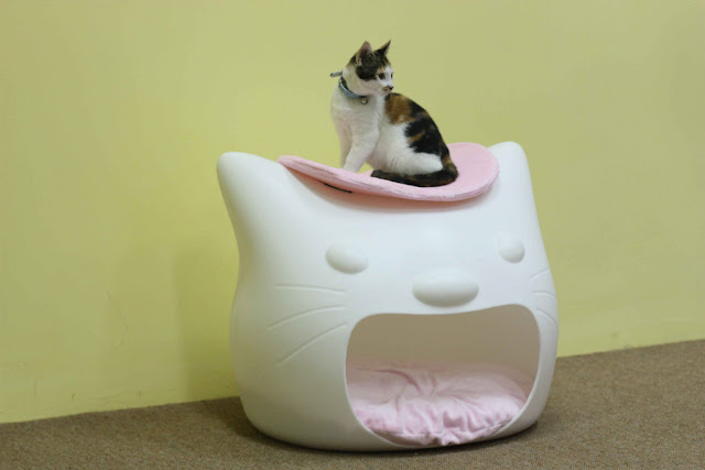 Kitten Head Pet Bed