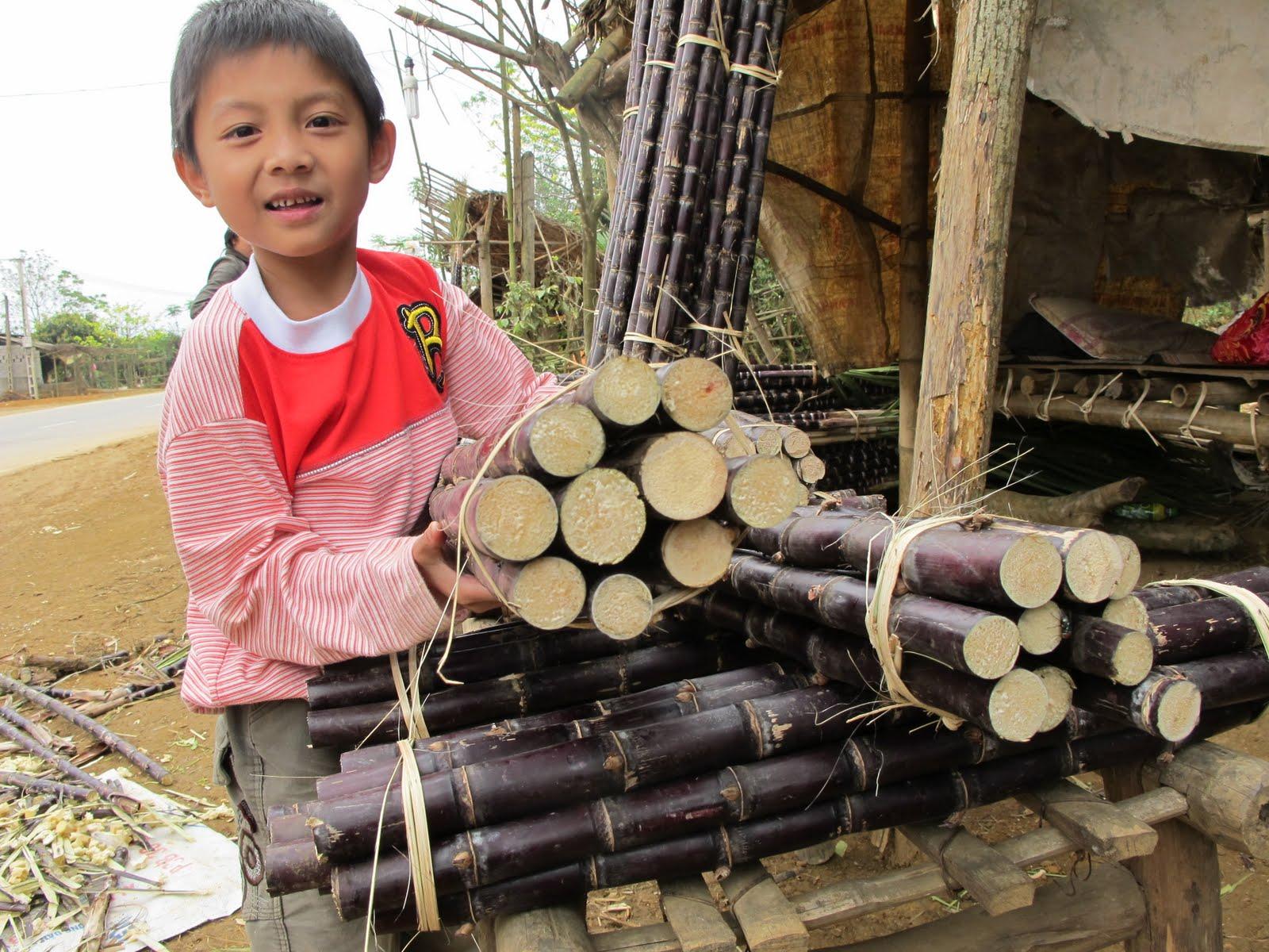 Vietnam le yin et le yang en route pour la vallee de mai for Acheter maison au vietnam