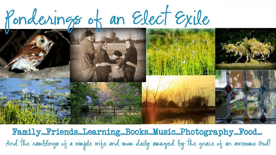 Ponderings of an Elect Exile