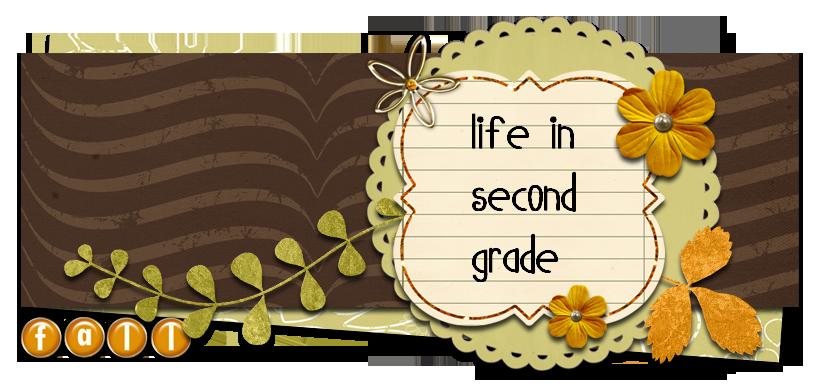 Life in Second Grade