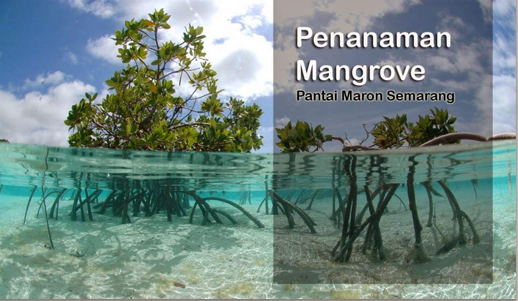 http://greeneration2014.blogspot.com/p/events-tanam-mangrove.html