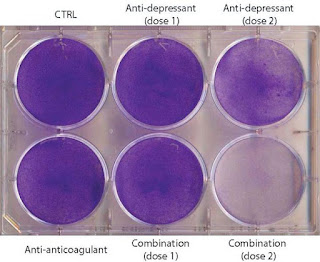 Antidepressants And Blood Thinners Cause Brain Cancer Cells To Eat Themselves