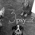 Trzy psy... w bloku?!