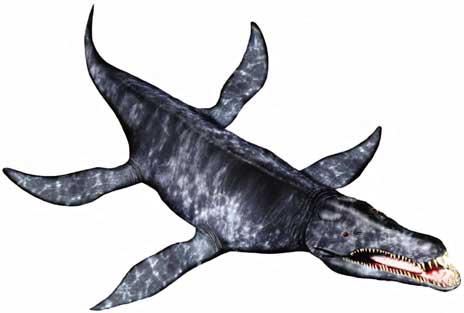 animales prehistoricos acuaticos