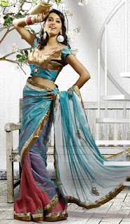 Party-Wear-Saree-with-Nice-Border