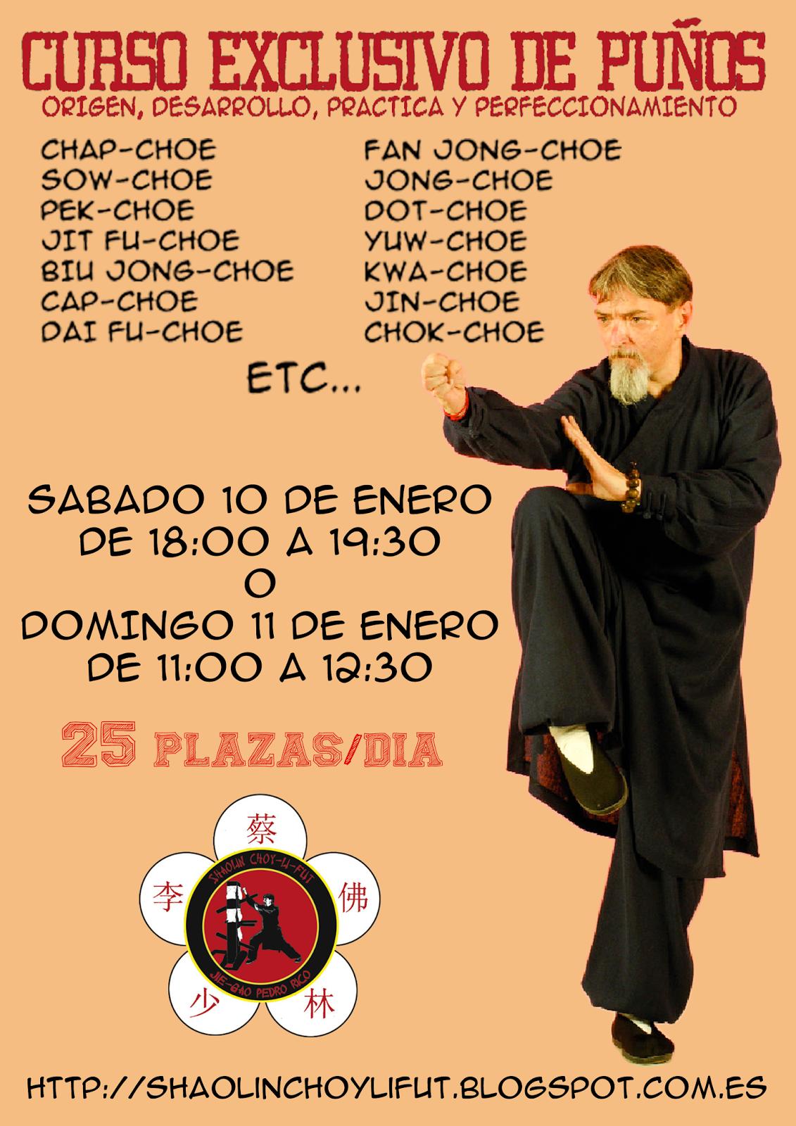 CURSO PUÑOS CHOY-LI-FUT