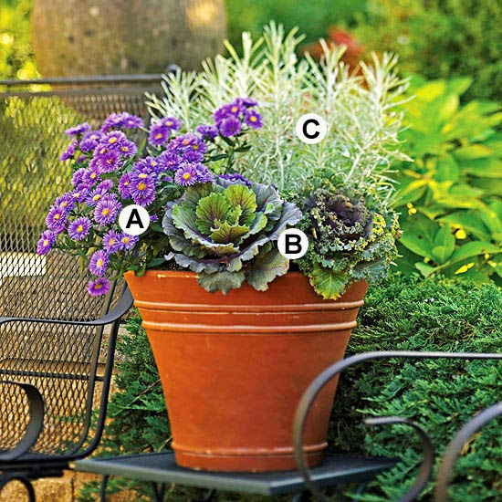 New Home Interior Design Fall Container Garden Recipes
