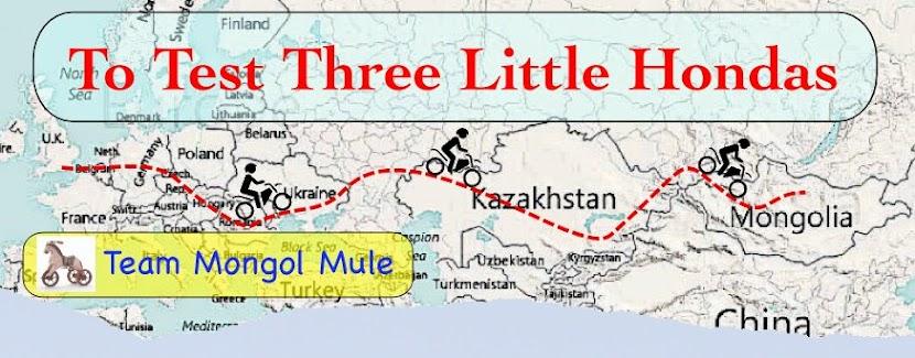 Mongol Mule