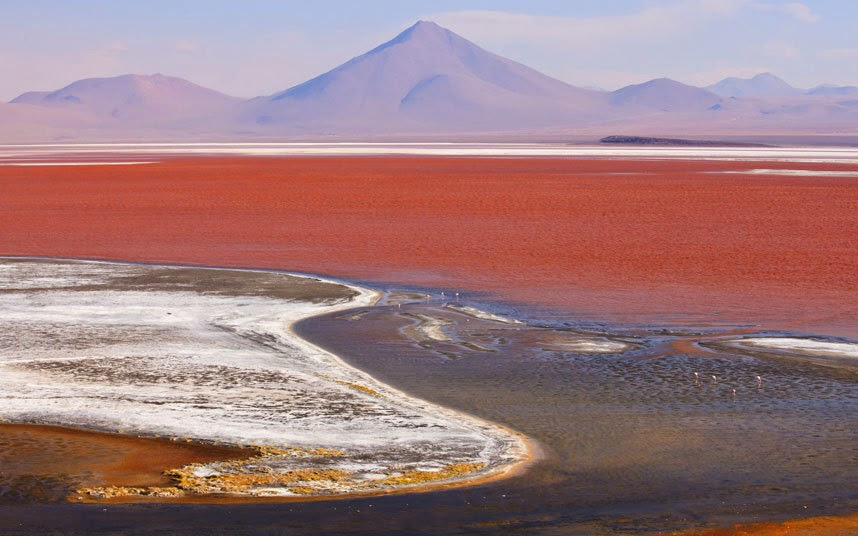 Salar de Uyuni, Bolivia The world's largest salt flat, formed from several prehistoric lakes, is laid out over a source of brine which contains nearly half of the world's lithium reserves.