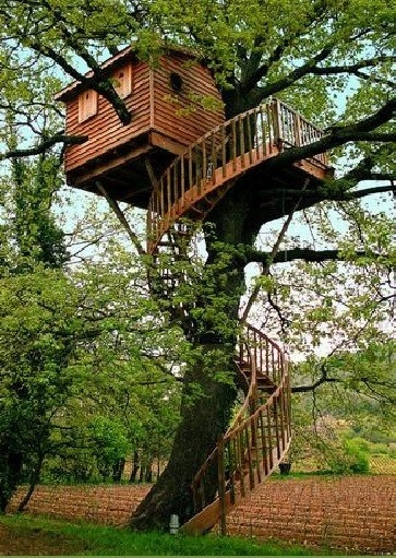tree house with swirly stairs
