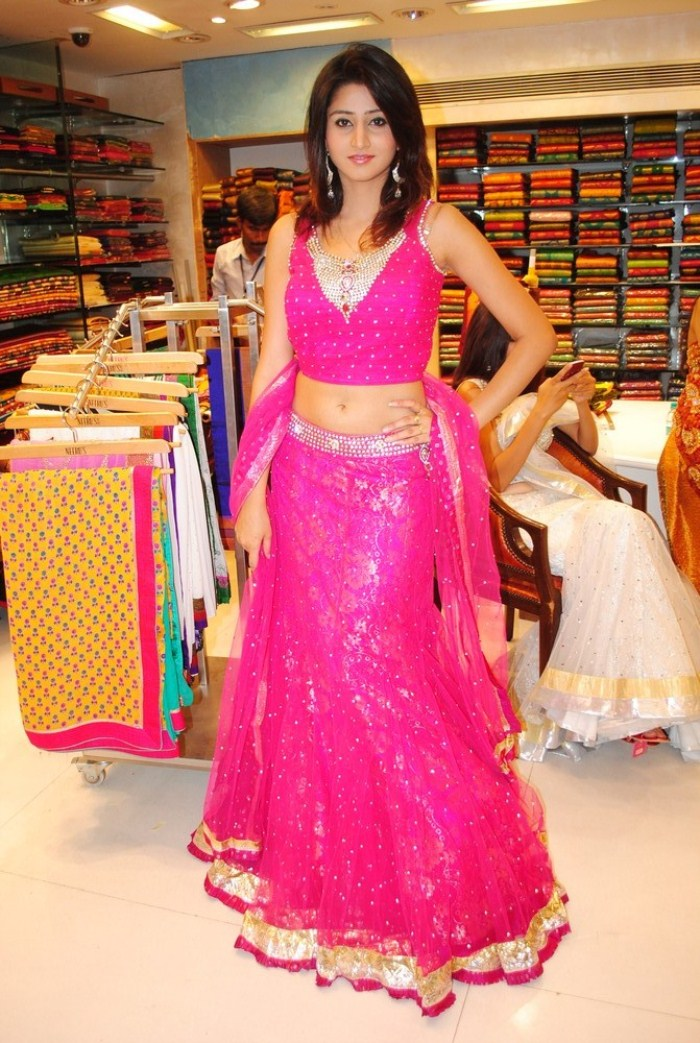 Hyderabad New Sexy Model Shamili Cute Navel Show Photoshoot images