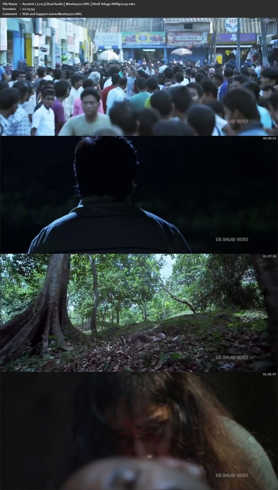 Aravind 2 (2013) Hindi Dubbed 490MB Download HDRip 480p
