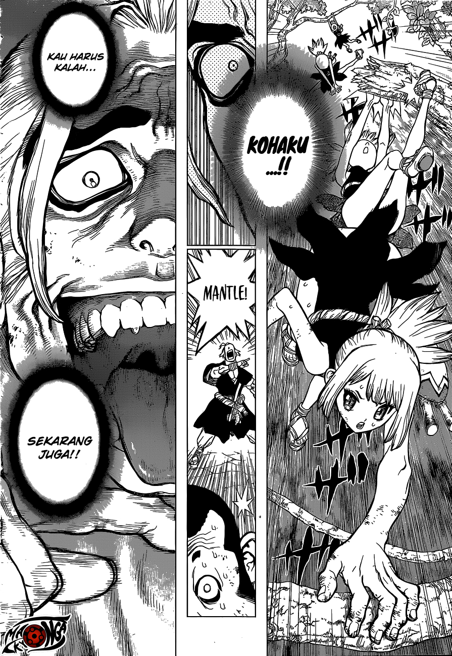 Dr. Stone Chapter 36-10