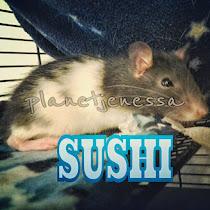 Sushi R.I.P