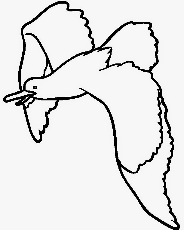 colours drawing wallpaper Best Couple Seagull Colour Drawing HD