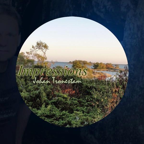 Johan Tronestam - Impressions / source : www.discogs.com