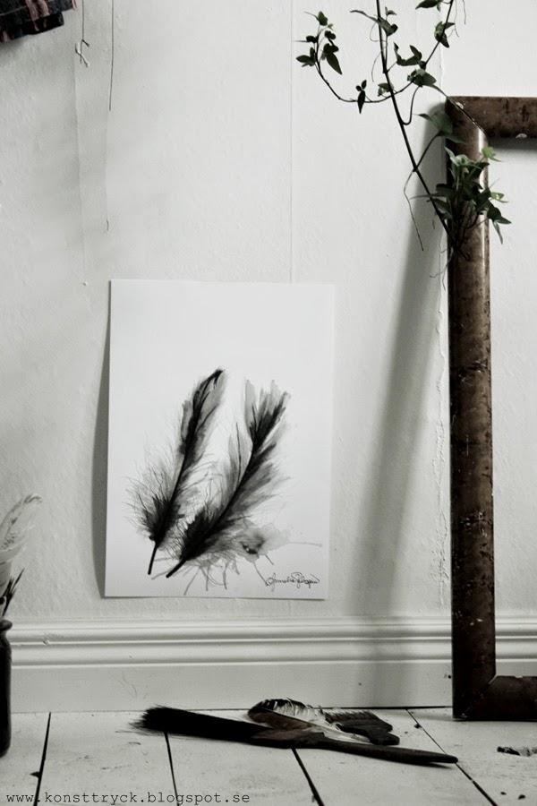 feathers tavla, fjäder tavla, artprint fjäder, svartvitt, svartvita tavlor, begränsad upplaga, signeras, numreras