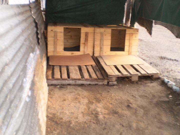 Hacer casa para perro paso a paso detallado taringa for Construir casa de perro