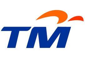 Telekom Malaysia (TM)
