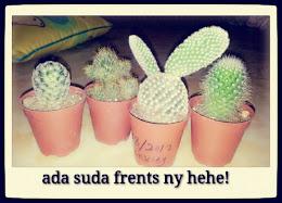 babyes cactus
