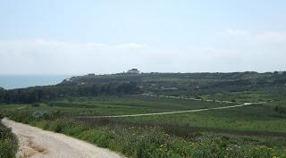 Akropolis von Selinunt. In der Mulde davor befand sich einst ein Hafenbecken der Stadt