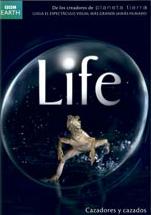 Cazadores Cazados - Life