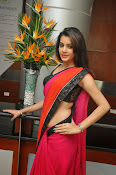 Deeksha panth sizzling saree stills-thumbnail-14