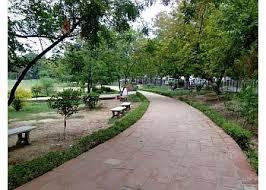 पालीवाल पार्क बनेगा पिकनिक स्पॉट