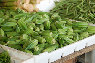 Okra also known as Ladies' Fingers