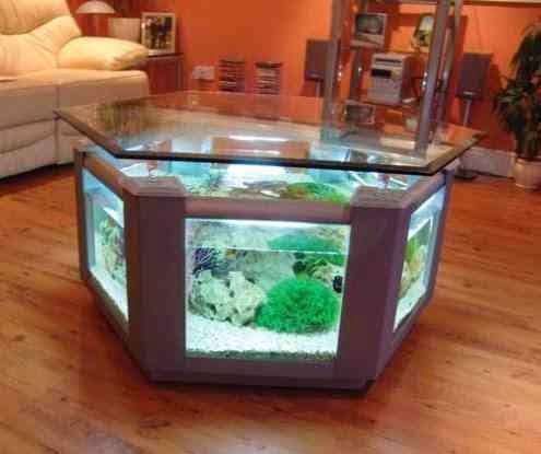 صور أحواض السمك - تصاميم جديدة لحوض السمك لتزيين المنزل