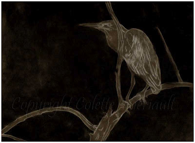 Step one of Green heron bird painting in progress by Canadian Wildlife Artist Colette Theriault