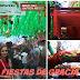 W krainie bajek czyli Fiestas de Gracia 2015