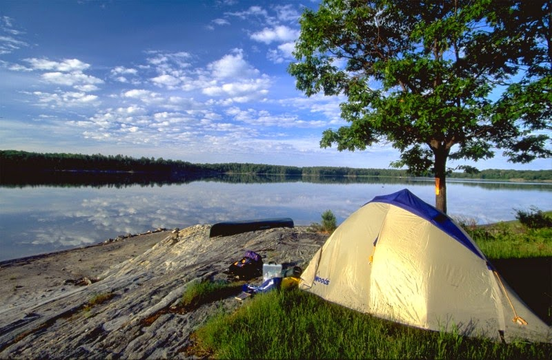 Camping for young adults in ontario