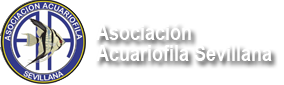 Asociacion Acuariofila Sevillana