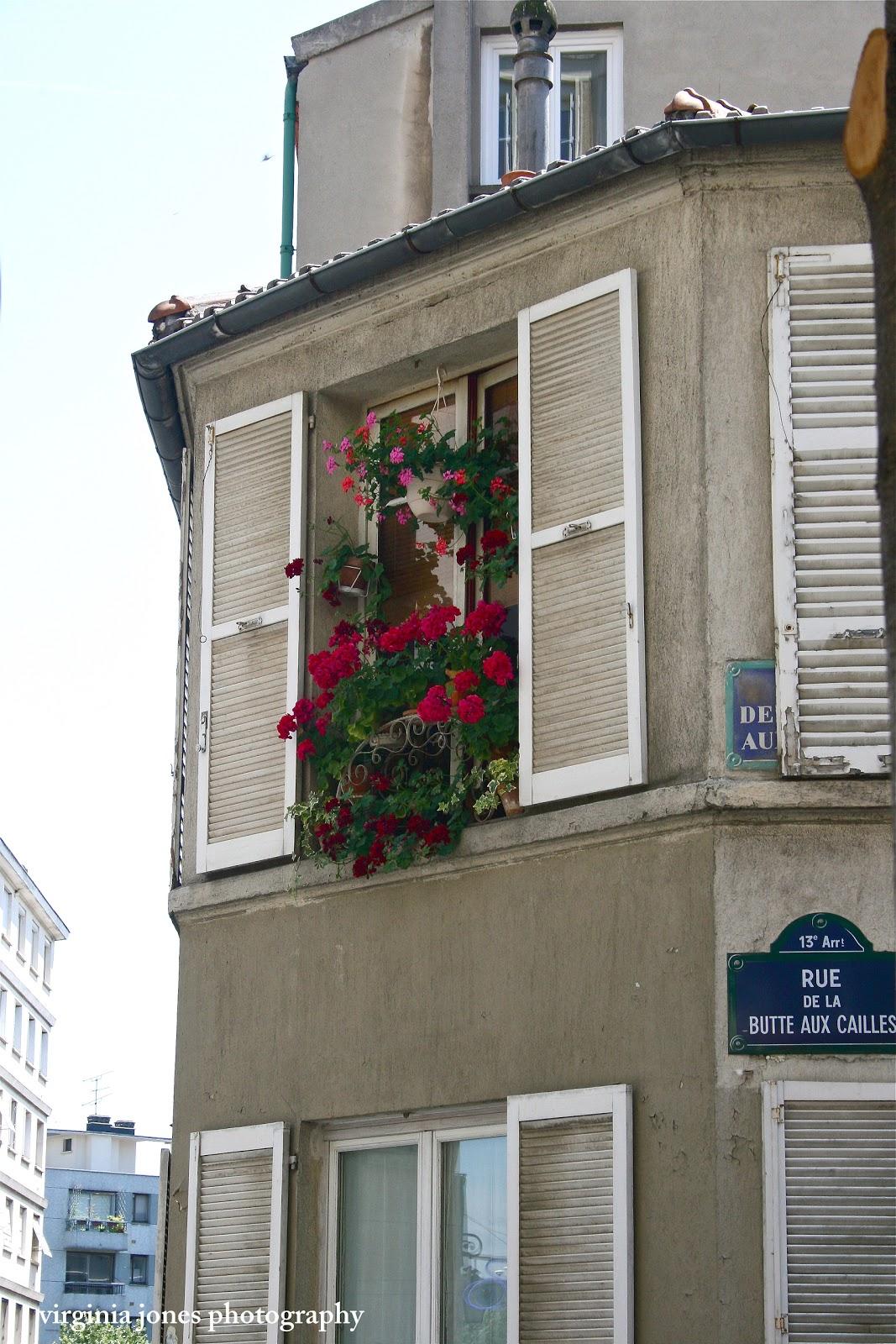 Paris through my lens les fleurs dans la fen tre for Buer dans les fenetre