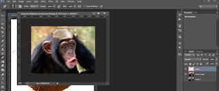 Cara manipulasi photoshop tutorial efek foto Kepala Aneh