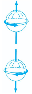 Satu elektron memungkinkan gerak putar ke kanan 1/2 dan ke kiri 1/2