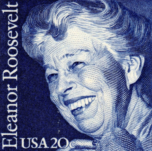 eleanor roosevelt a personal and Free essay: j william t youngs eleanor roosevelt: a personal and public life  longman, new york 2000 this book is about a woman who.