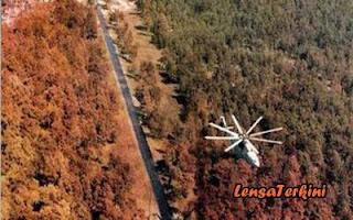 Hutan%2Bmerah%2Bdi%2BPripyat.jpg